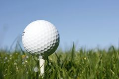 Close up of golf ball on tee Royalty Free Stock Photos