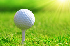 Close up of golf ball. Stock Photography