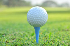 Close up of golf ball on tee Royalty Free Stock Photography
