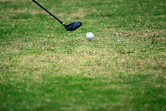 Close up of golf ball on tee. Royalty Free Stock Image