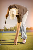 Close up of golf player picking up ball. Royalty Free Stock Images