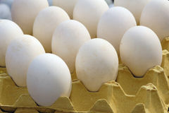 Goose's egg Royalty Free Stock Photo