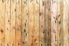 Close up grain textures of arrangement bark wood in vertical row Royalty Free Stock Photography