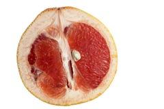 Close up of grapefruit Stock Images