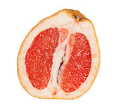 Close up of grapefruit section Stock Images
