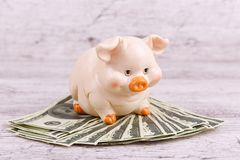 Close-up on a gray background piggy piggy bank with money. stock images