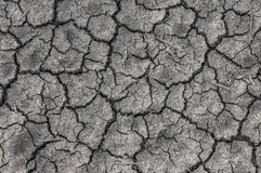 Close up of gray cracked earth background. Stock Photo