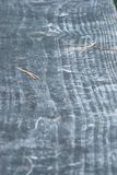 CLOSE UP OF A GRAY GRAIN OF WOOD BENCH royalty free stock photo