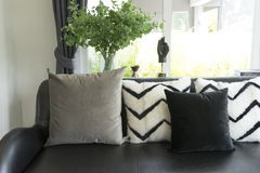 gray pillows setting on beige couch in living room stock photography