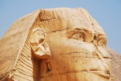 Close-up on the great Sphinx in Cairo, Giza, Egypt royalty free stock photo