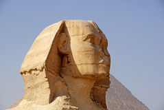 Close-up of The Great Sphinx of Giza Royalty Free Stock Images