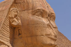 Close up of Great Sphinx. Of Giza Royalty Free Stock Images