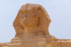 Close up of Great Sphinx. Of Giza Stock Photos