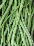 Close up Green bean at the Indian market Stock Photography