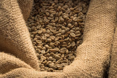 Close up of Green Coffee Beans in Burlap Sack Royalty Free Stock Photo