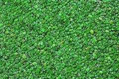 Close up of green coloured natural stone carpet. Decorative stone coating. Slip resistant floor finish containing natural stone. Particles stock images