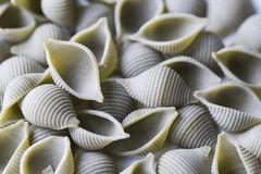 Close up green conchiglie pasta royalty free stock photos