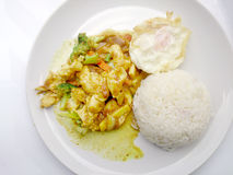 Close up green curry fried Vegetable with chicken on dish, Delicious fried fried vegetable with chicken green curry, Thai Food Royalty Free Stock Photos