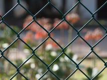 Close up of green diamond mesh fence Stock Image
