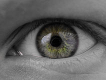 Close up green eye of a girl Royalty Free Stock Image