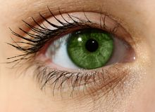 Close up green eye with makeup Royalty Free Stock Image