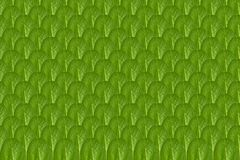 Close up green leaves pattern background photo.  royalty free stock photo