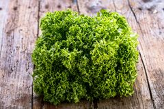 Close up of green lettuce. Concept of healthy lifestyle and dieting. royalty free stock images