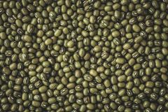 Close up a green mung beans grain seed background Stock Photos