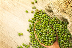 Close up green mung beans in wooden spoon on wood plate Stock Images
