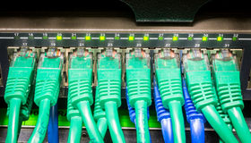 Close up of green network cables connected to Stock Image