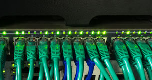 Close up of green network cables connected to switch glowing Stock Images