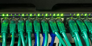 Close up of green network cables connected to switch glowing Royalty Free Stock Photo