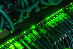 Close up of green network cables connected to switch glowing in the dark Stock Images