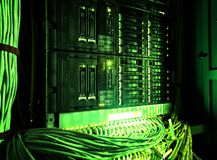 Close up of green network internet cables, patch cords connected to black switch router in Data center, server room. Network switch and UTP ethernet cables royalty free stock photo
