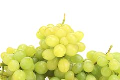 Close up of green ripe grapes. Royalty Free Stock Images