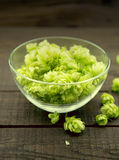 Close up of green ripe hop cones in a glass bowl over dark rusti stock image