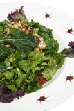 Close-up of Green Salad. Close-up of fresh green salad with grilled chicken and pine nuts with a balsamic dressing Royalty Free Stock Images