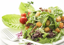 Close-up on green salad. Green salad served with mixed vegetables, swallow depth of field Stock Image