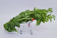 Close-up of green vegetables on shopping carts about online vegetable sales.  White background. Close-up green vegetables shopping carts online sales white royalty free stock image