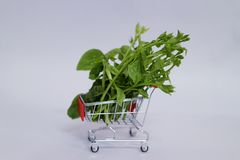 Close-up of green vegetables on shopping carts about online vegetable sales.  White background. Close-up green vegetables shopping carts online sales white stock image