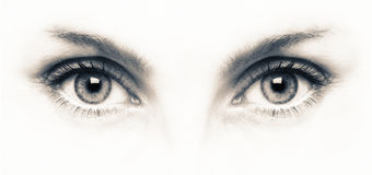 Close up of grey eyes on white background. Close up of attractive girl with beautiful grey eyes on white background Stock Images