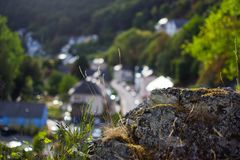 Close up of a grey stone with yellow strows and green vegetation, with defocused background of a street with houses.  royalty free stock photos