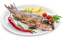Close up of grilled carp steak. Stock Photo