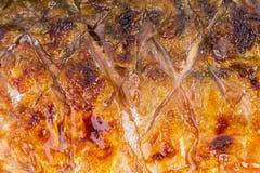 Close up grilled fish saba skin Stock Images