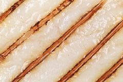 Close up of grilled pangasius fillet texture. Royalty Free Stock Images