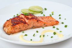 Close up grilled salmon served on white dish.  Selective focus. Stock Image