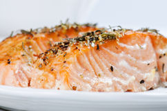 Close up grilled salmon steaks Stock Images