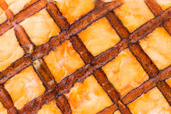 Close up of grilled salmon texture. Stock Images