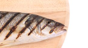 Close up of grilled seabass fish on platter. Stock Image