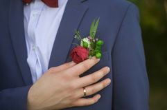 Close up of groom in blue suit and burgundy bow tie adjusting red rose in buttonhole royalty free stock image